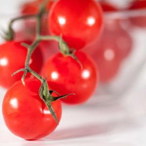 cherrytomaten-1024x768